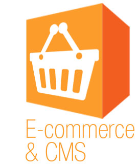 E-commerce and Content Management Systems